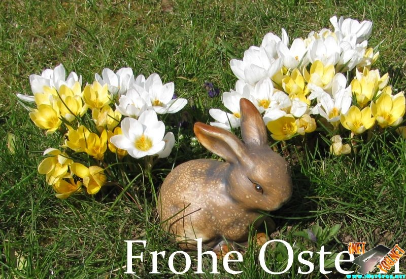 Frohe Ostern_1